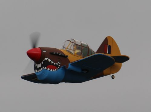 """Fatty"" Curtiss P40 Schablonenplan"